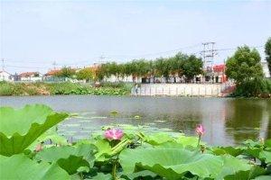 湖南十大乡镇排行榜:安江镇上榜,第三有黄花机场