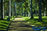 盘点全球最梦幻的10大童话花园